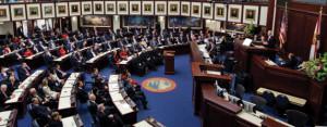 Legislative issues FL